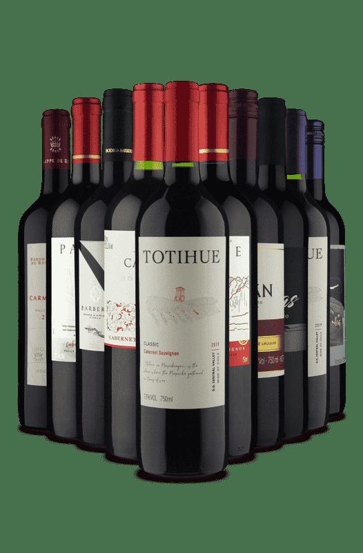 Kit Tintos de Sabores Diversos (10 Vinhos)