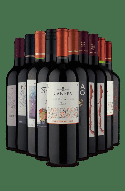 Kit Vinhos Tintos Diversos Sabores (10 Vinhos)