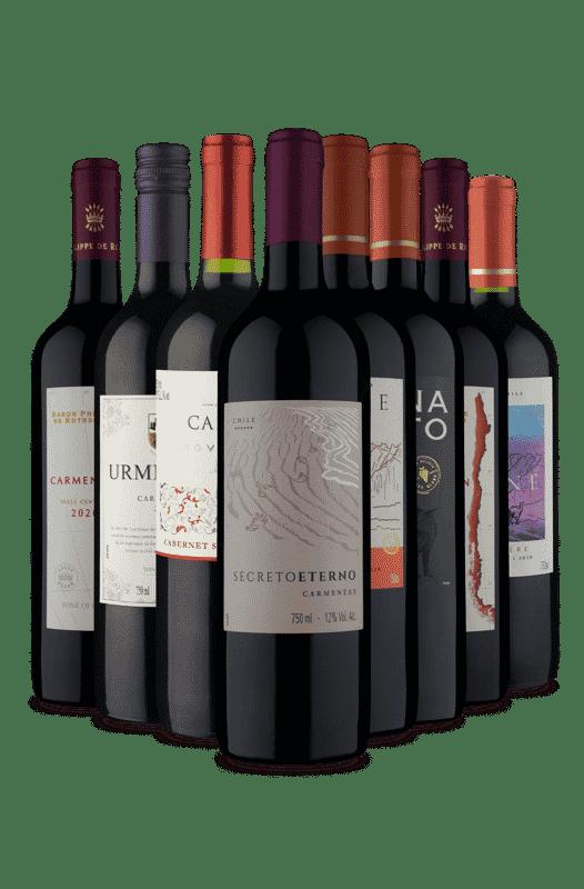 Kit Tintos Chilenos Secos e Meio Secos (8 Vinhos)