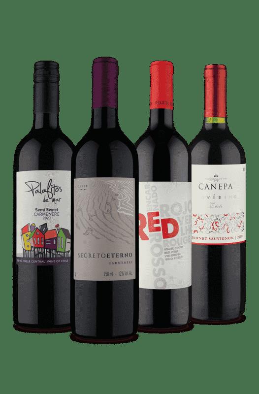 Kit Quarteto Tintos de Sucesso (4 Vinhos)