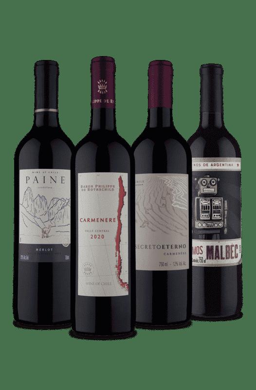 Kit 1 Argentino 3 Chilenos (4 Vinhos)