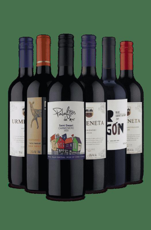Kit Tintos de Sucesso (6 Vinhos)