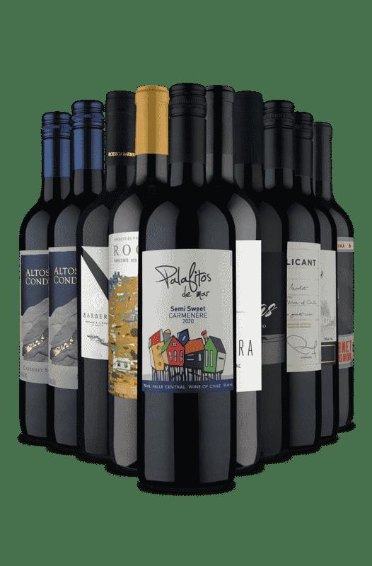 Kit Adega Cheia, Dia Feliz (10 Vinhos)