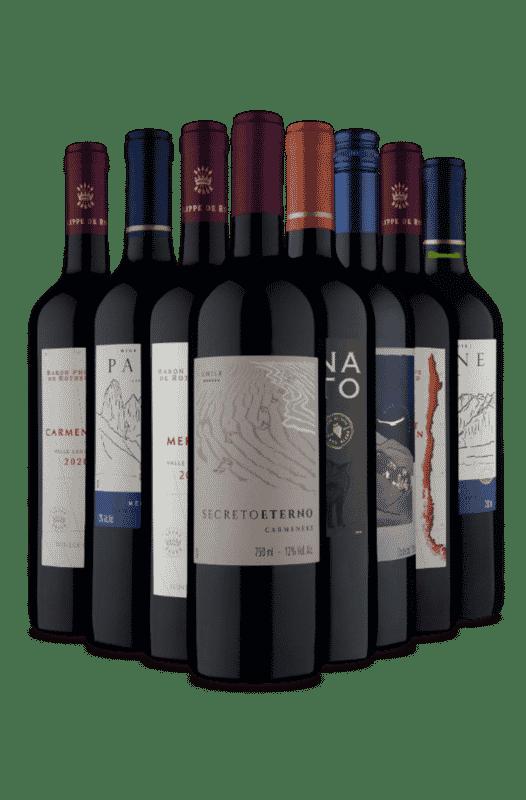 Kit Um toque Argentino no Chile (8 Vinhos)