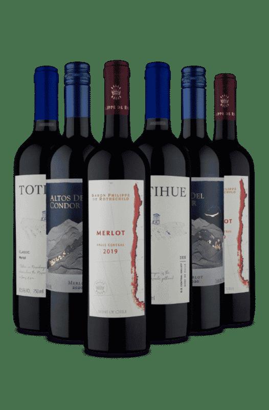 Kit Merlot Selecionados (6 Vinhos)