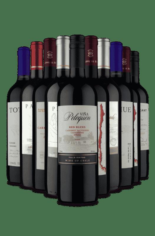 Kit Chilenos Tintos Secos e Meio Secos (10 Vinhos)