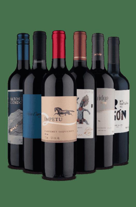 Kit Chile e Argentina Tintos (6 Vinhos)