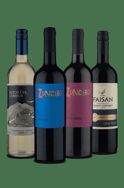 Kit 1 Branco e 3 Tinto - America do Sul (4 Vinhos)