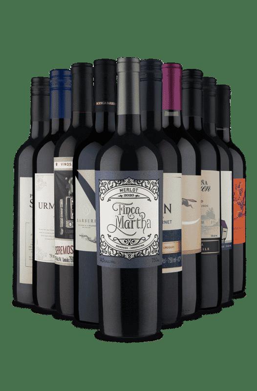 Kit Desfrutando a América do Sul (10 Vinhos)