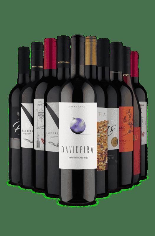 Kit Os 10 Mais Queridinhos (10 Vinhos)