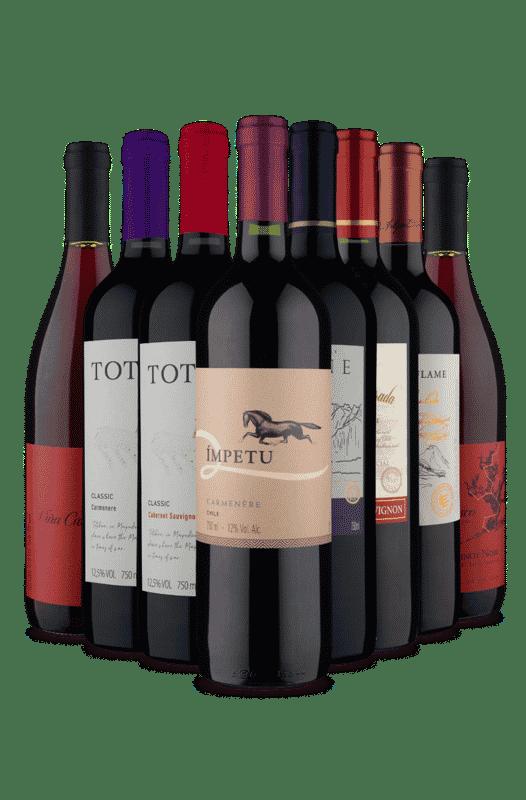 Kit 8 Tintos Incriveis Chilenos (8 Vinhos)