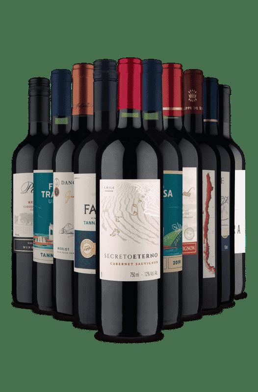 Kit Tintos Espetaculares para você (10 Vinhos)