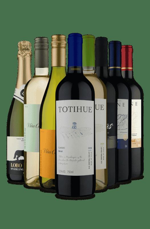 Kit 8 Meio Tinto - Meio Refrescante (8 Vinhos)